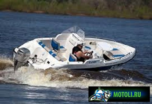 Лодка Бестер 480
